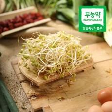 무농약 콩나물