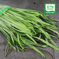 유기농 부추 (300g)