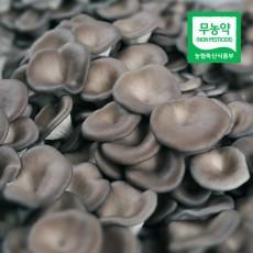 무농약 느타리버섯 (2kg)